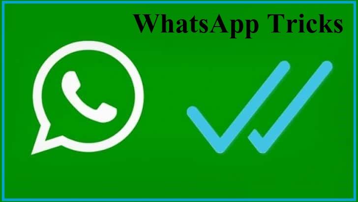 How to Check WhatsApp last seen if hidden